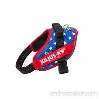 Julius-K9 IDC-Power Harness with illuminated Velcro patches Ameri-Canis Size: Mini/49-67 cm - B01COEYCGC