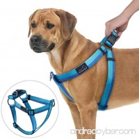 PETBABA No Pull Dog Harness  Front Clip Choke Free Reflective Safe at Night Walking Chest Vest with Martingale Handle on Top Good for Traffic Control Training - B074487H41