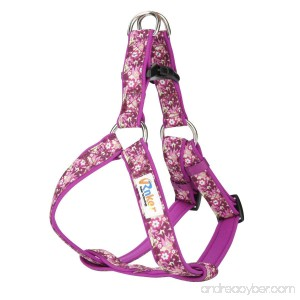 Rnker Step-in Harnesses no pull flowers pattern by hot stamping Neoprene Padded adjustable walking training dog Harness - B073TF8RRX