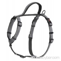 The Company of Animals HALTI Walking Harness - B01EAQE5IM