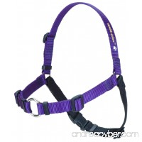 The Original SENSE-ation No-Pull Dog Training Harness - B00HR6CHF6