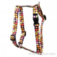 Yellow Dog Design Bright Fun Roman Style H Dog Harness - B01F0IGKIM