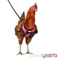 Yesito Chicken Harness Hen Size With 6ft Matching Leash – Adjustable  Resilient  Comfortable  Breathable  Large size  Suitable for Chicken Weighing about 6.6 Pound Pink - B07D1CRSM3