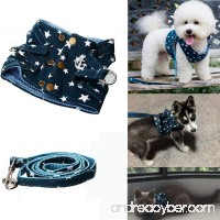 Bro'Bear Pet Stars Vest Mesh Harness and Leash Set Blue for Cats & Small Dogs Blue - B00XWC5P1M