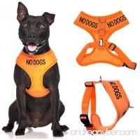 Dexil Limited NO DOGS (Not good with other dogs) Orange Color Coded Non-Pull Front and Back D Ring Padded and Waterproof Vest Dog Harness PREVENTS Accidents By Warning Others Of Your Dog In Advance - 6041026581