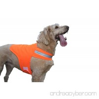 Dog Not Gone Visibility Products Safety Dog Vest  Hunter Orange - B005KW5CEM