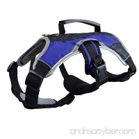 Dog Walking Lifting Carry Harness Support Mesh Padded Vest Accessory Collar Lightweight No More Pulling Tugging or Choking for Puppies Small Dogs (Black Small) by Downtown Pet Supply - B0757ZRVD7