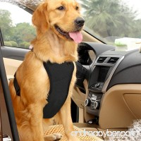 EAST-BIRD Dog Safety Vest Harness with Safety Belt for Most Car Travel Strap Vest with Car Seat Belt Lead Adjustable Lightweight and Comfortable - B075C1R45F