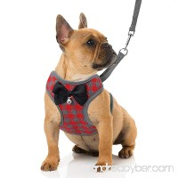 RYPET Small Dog Harness and Leash Set - No Pull Pet Harness with Soft Mesh Nylon Vest for Small Dogs and Cats - B07BJ5WL2G