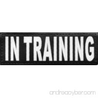 Service Dog In Training Reflective Hook and Loop Patch for DogStylze And Dean & Tyler Vests - B00JLLG7EC