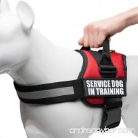 "Service Dog in Training Vest Harness  Service Dog Harness with 2 Reflective ""SERVICE DOG IN TRAINING"" Patches  by Industrial Puppy - B00PINWHAA"