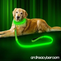 BSeen LED Dog Leash - USB Rechargeable 47.2 inch 120 cm Reflective Night Safety Pet Leash LED Strip to Keep You and Your Dog Safe - B0723CLFFJ