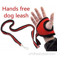 Hands Free Dog Leash Lead - Best Running Training Leash Lead with Zero Bungee Shock Absorbed Belt – for Small Medium Large Dogs Safety – Adjustable from 4.7ft to 6ft - B0796958ZM