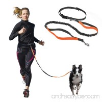 Hands Free Dog Leash with Retractable Leash  Strong Bungee  Dog Waste Bags for All-Size Dogs - B0742BW6TG