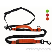 Kegitantan Running Dog Leash Hands Free 4ft Dual Handles Bungee Leash for Large Dog - B07C2W5J79
