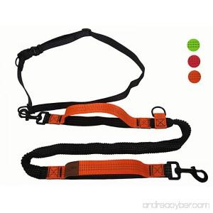 Kegitantan Running Dog Leash Hands Free 4ft Dual Handles Bungee Leash for Large Dog - B07C2W5J79