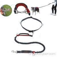 Petopt Hand Free Dog Leash for Running Walking Training Dual-Handle Running Dog Leash with Reflective Bungee - B076MSSKHW