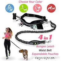 PREMIUM Hands Free Dog Leash | Bungee Dog Leash for Walking & Running with Small  Medium or Large Dogs | Reflective Waist Belt for Phone  Keys and Cards |BONUS Collar Bag Dispenser |Great GIFT - B075WDBBMQ