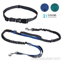 Tabpole Hands Free Waist Dog Leash  with Dual Bungees  For Medium and Large Dogs Up to 150 lbs  Durable Dual-Handle Bungee Leash with Adjustable Waist - for Running  Jogging  Walking  Hiking  Biking - B07D33BS42