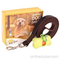 ADITYNA Leather Dog Leash 6 foot - Leather Dog Leashes for Large Medium and Small Dogs - Leather Leash for Walking and Training - Heavy Duty Dog Leash Leather (Brown) - B0758CD12K