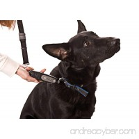 PatentoPet DOG-e-Walk Premium Dog Trainer Black - B003N325WW