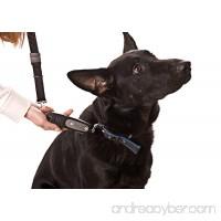 PatentoPet DOG-e-Walk Premium Dog Trainer Black - B003N325WW