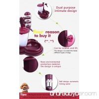 Petstao Pet Automatic Feeding Device And Drinking Kettle For Dogs & Cats - B072NYPS9J