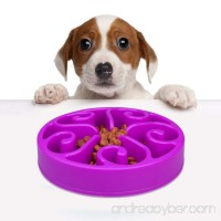 Dog Bowl Feeder Fun Slow Feeder  Helping Prevent Obesity Bloat Regurgitation and Overeating Anti-Skid Design (purple) - B075J92VQN