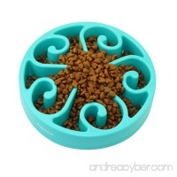 Fun Feeder Slow Feed Dog Bowl-Stop Bloat with Anti-skid Design for Dog Cat - B0739MF5KN