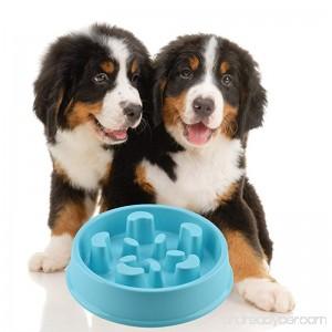GOGOKING Dog Bowl Fun Anti-Choke Bowl Pet bowl Healthy Food Bowl Slow Feeder Dog Bowl Christmas Gifts - B01M8NASA3