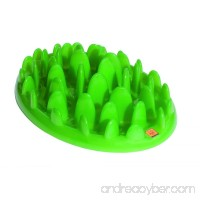Northmate Green Slow Feeder - B00EB4IVU2