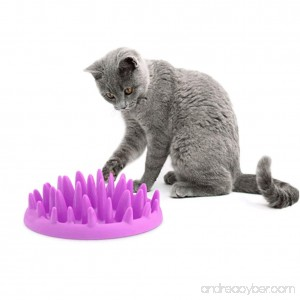 Patgoal Cat Catch Interactive Feeder Bowl Slow Feed Anti-gulping Bloat Stop Pet Bowl - B0718ZRP89