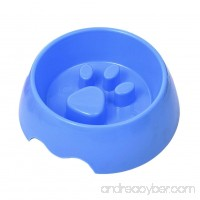 Patgoal Pet Slow Feeder Bowl Fun Feeder Interactive Bloat Stop Dog Bowl - B072XCPM4M
