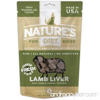 Nature's Diet Pet Raw Freeze Dried Grain Free Dog Treats - B078SZ45T1