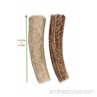 Buck Bone Organics Elk Antler Dog Chew for Small Dogs Two Sizes Small and Small Double Pack All Natural Long Lasting From the Rocky Mountains Happy Chewing! - B00WAJ6NYG