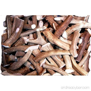 Premium Deer Antler Pieces - by Big Dog Antler Chews - Antlers by the Pound One Pound - Six Inches or Longer - Medium Large and XL - Happy Dog Guarantee! - B01AFEP9J2